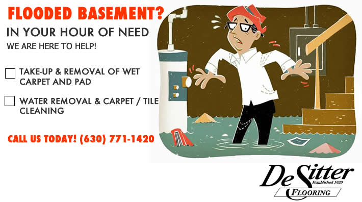 Basement Flooding Barrington, IL 60010, 60011