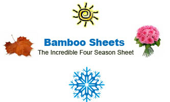 Season Bamboo