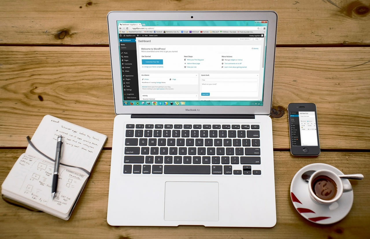 Wordpress Web Developers
